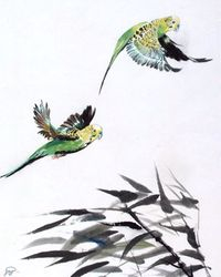 Parakeets Fly In  Head Wind