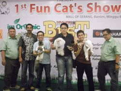 1st Fun Cat's Show