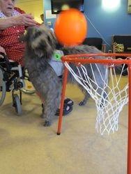 Spille basket med Ludvig
