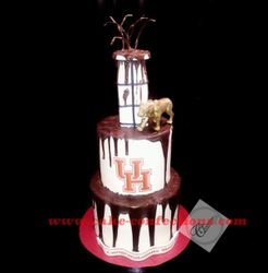 University of Houston Grad Cake