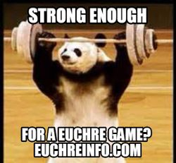 Strong enough for a Euchre game?