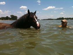 Swimming Lake Waxahachie