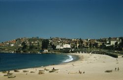 177 Manly Harbour Beach 1957