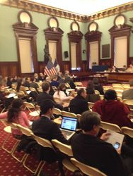 NYC Council preliminary budget hearing 2014