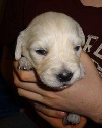 Three weeks old!