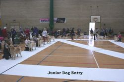 SWGRC Champ Show 17th March 2013