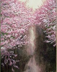 Cherry Blossom On Both Bank B