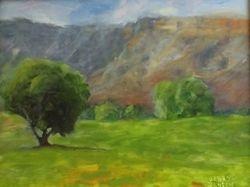 East Orchard Mesa