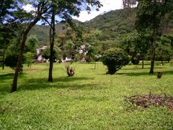 College Grounds