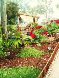 Kiosk gardens