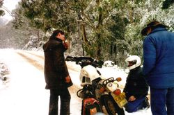 1999 Some bikes just stop and dont want to start again