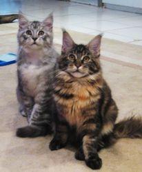 Aurora and friend Ellie