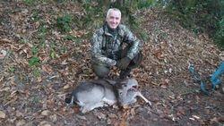 The Deer Warden