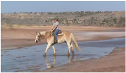 Salt Fork Brazos River