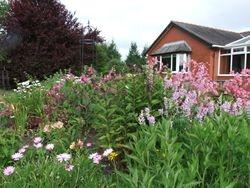 Conservatory border
