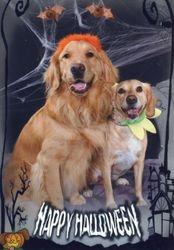 Howl-o-ween with my friend, Hazel