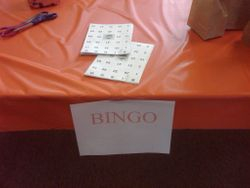 BINGO ANYONE