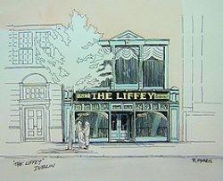 The Liffey Hotel Dublin