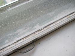 Bedroom Window (before)