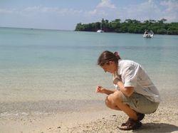 Ann collecting shells on BBC beach