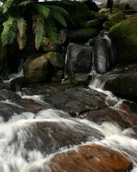 Murrindindi Cascades - closer