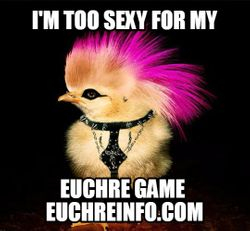 I'm too sexy for my Euchre game.