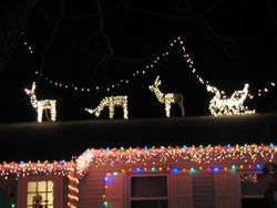 reindeers on the roof