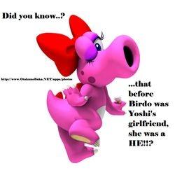 Did You Know Birdo was a HE?