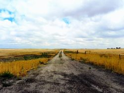 Farm Road 004