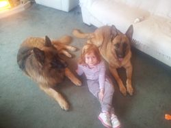 Tyson & Oscar with our Granddaughter