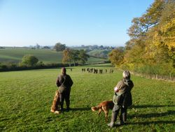 All Aged Trial Orchardleigh  23rd November 2013