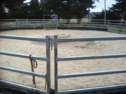 All weather sand lungeing and riding yard