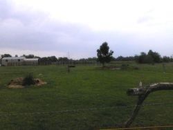 Lusheous green pastures