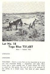 Tega Blue