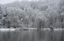 Pine Lake, Late March Snow 2