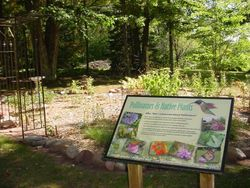 Nature Garden 2