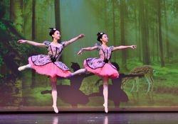Flute  - The Nutcracker, Ballet