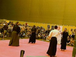 Martial arts Stage - Sword masters