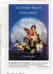 Illustration zum Wahnsinn de Waldschlößchenbrücke in Dresden