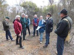St Arnaud Field Naturalists at Malleefowl mound
