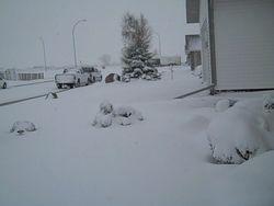 May 5, 2010 Alberta Spring