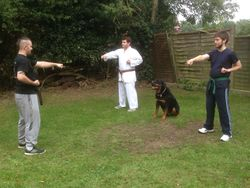 Training in the Garden with Tink!!