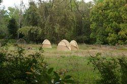 Grass mat huts