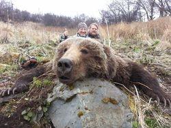 Allans bear