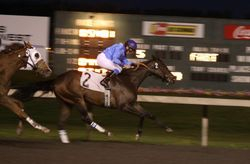 Cedar Hill at Emerald Downs - Mark & Holly's Horse
