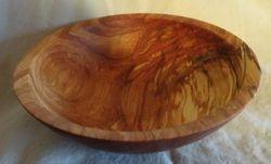 Spalted Birch #1816
