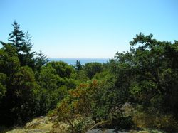Top of Pandora Hill.