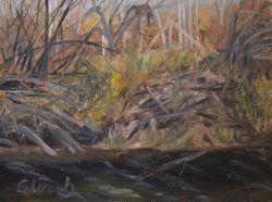 Sturgeon River, north of Edmonton, AB (oil on canvas)
