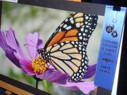 2012 State Convention Art Contest Winner!