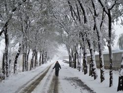 Road Outside the School - Winter